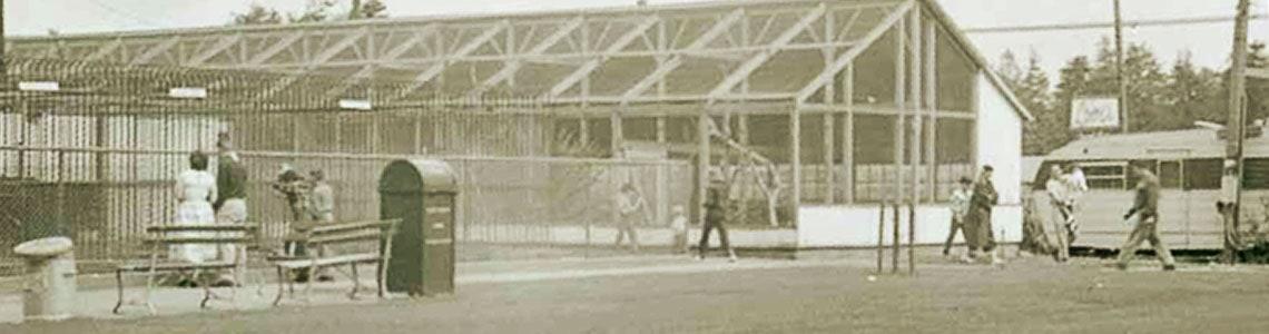 historical photo of sequoia park zoo