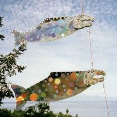 salmon art26