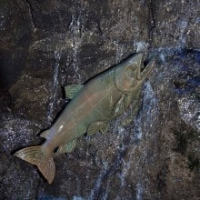 salmon art 3