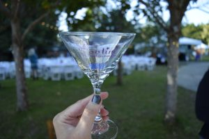 13th Annual Zootini